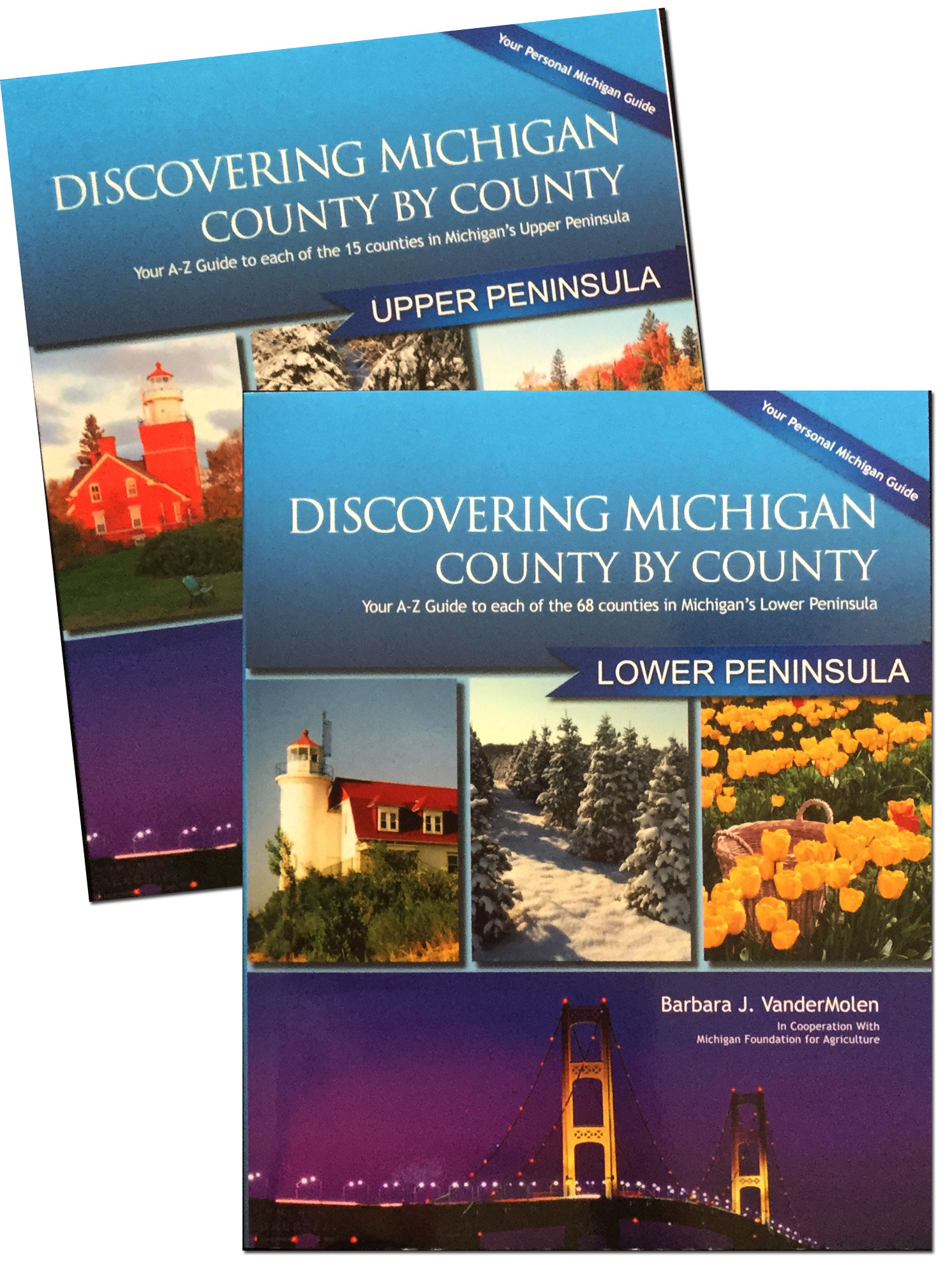 Discovering Michigan County by County Printed Editions